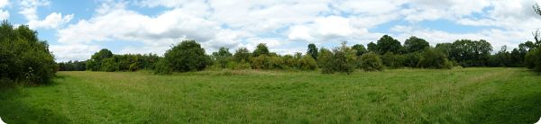 Community Orchard    Find it on Google Maps
