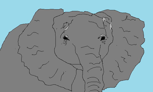 blogElephant.jpg