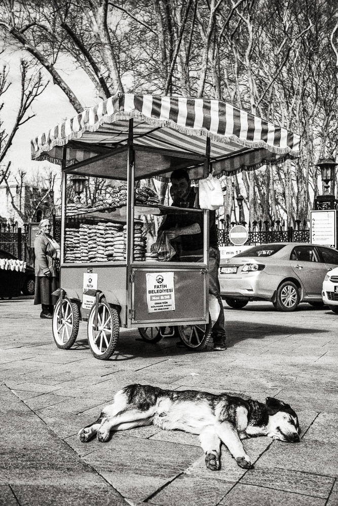 FM_istanbul_033.jpg