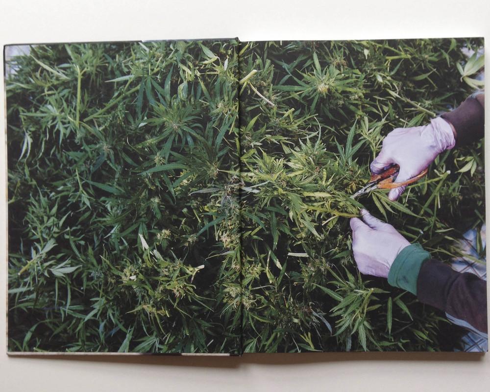 bookpage5.jpg