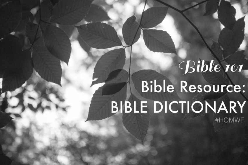 BIBLE DICTIONARY.001.jpg