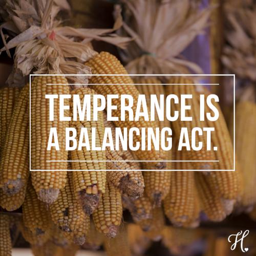 temperance 8-23.png