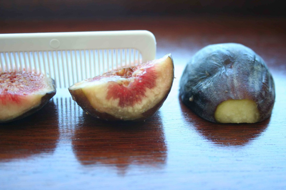 comb in figs.jpg