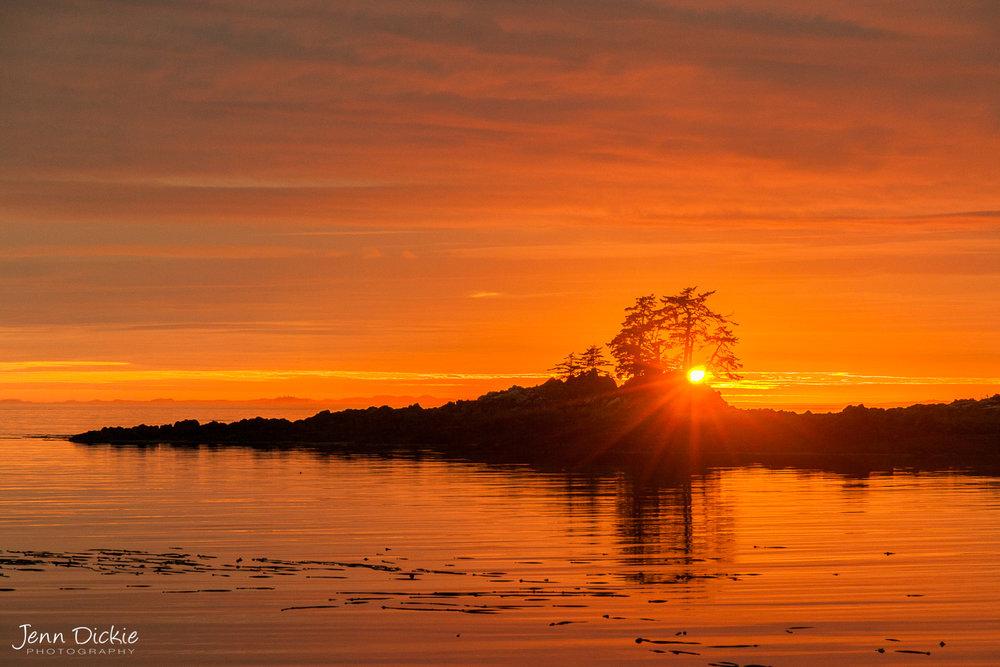 Sagar Island Sunset