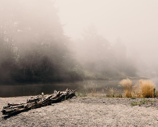 """Early morning Clallam Bay. I had never seen fog """"cling"""". Part of To Raze The Wall I've Constructed: The B-Sides."""