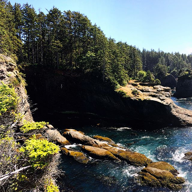 Cape Flattery is the most Northwestern point in the continental United States. It's also the secret gateway to Narnia.  Some people go their whole lives without seeing something like this.  Part of To Raze The Walls I've Constructed: The B-Sides.