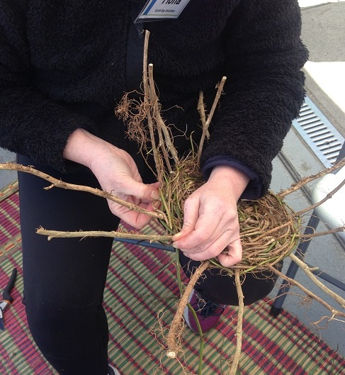 Weaving with ivy was a popular activity. (K. Stormont Photo)