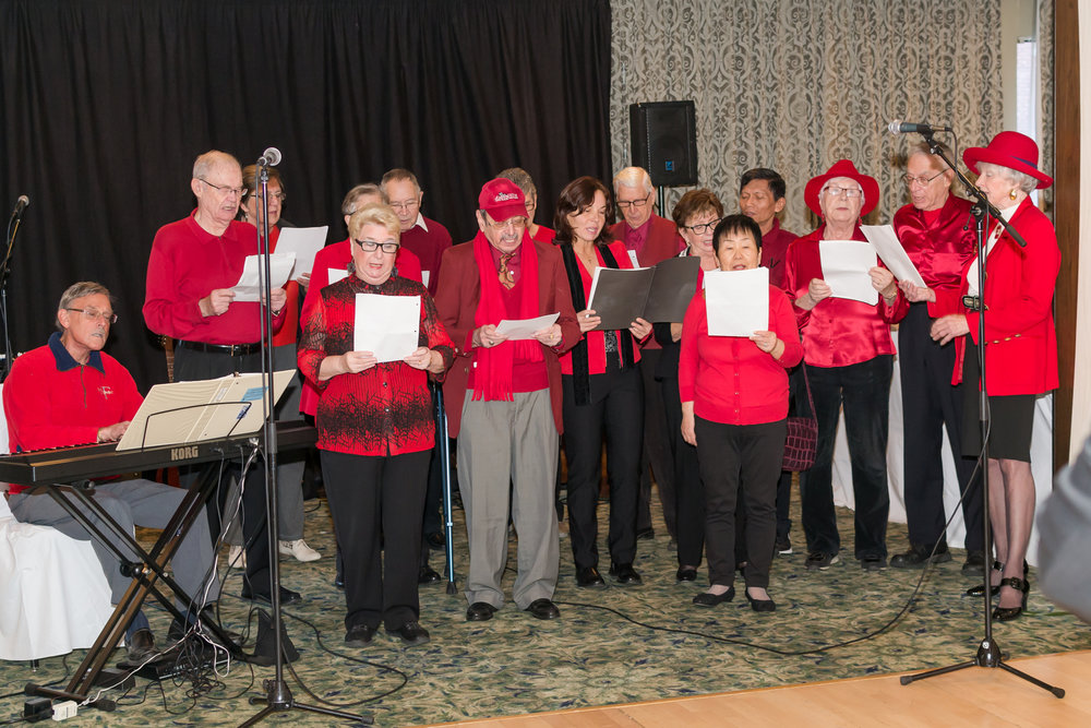 Revellers at the annual West End Seniors' Network's Holiday Luncheon. (The Orange Lamphouse Studio Photo)