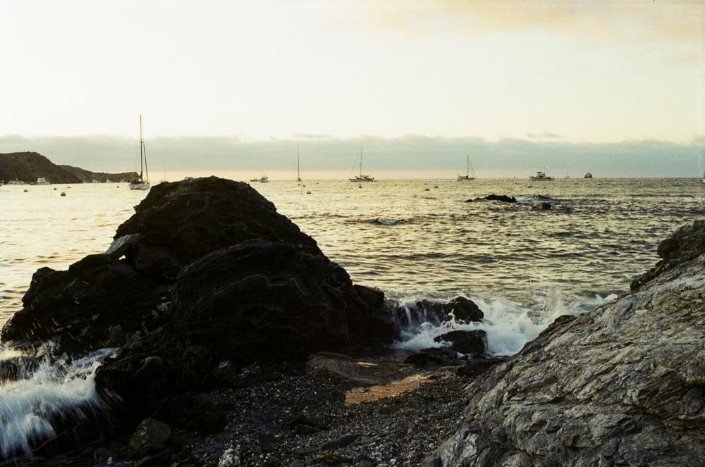 Catalina-9.jpg