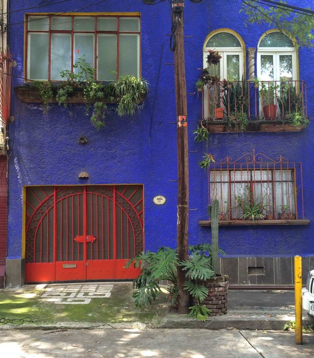 Blue house in Condesa (my very favorite blue that you don't find in many other places outside of Mexico)