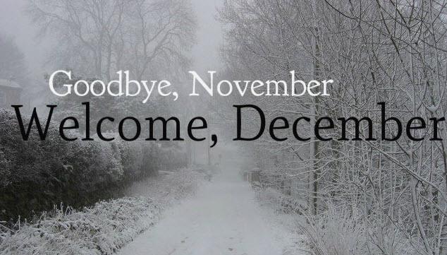 2016-11-22_13-18-54.jpg