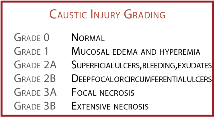 fIGURE 1.  eNDOSCOPIC GRADING SYSTEM FOR CAUSTIC INJURIES.