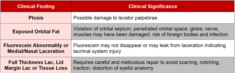 Minor Care Series Eyelid Lacerations Taming The Sru