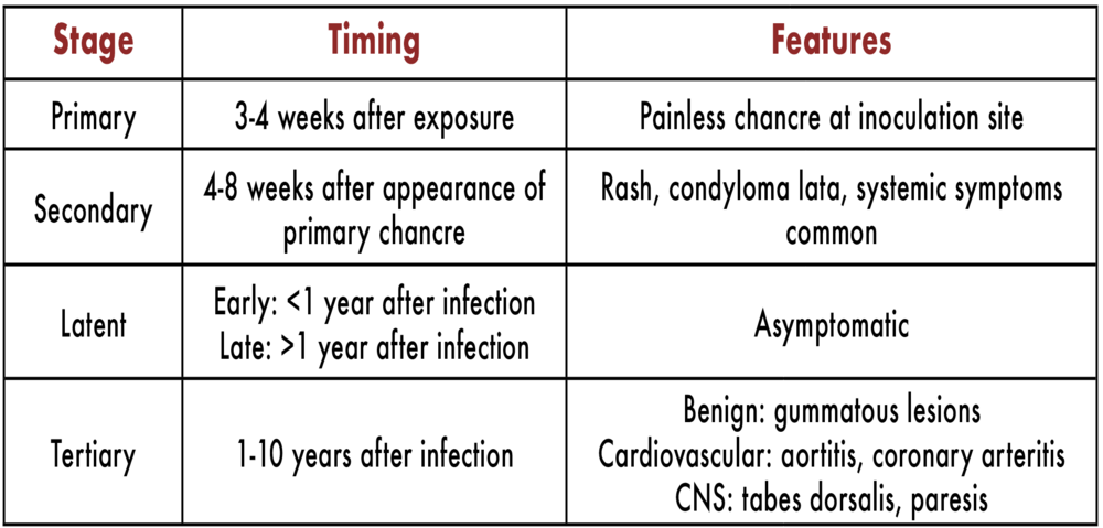 table 1. Stages of syphilis based on timing of initial infection and characteristic signs and symptoms.