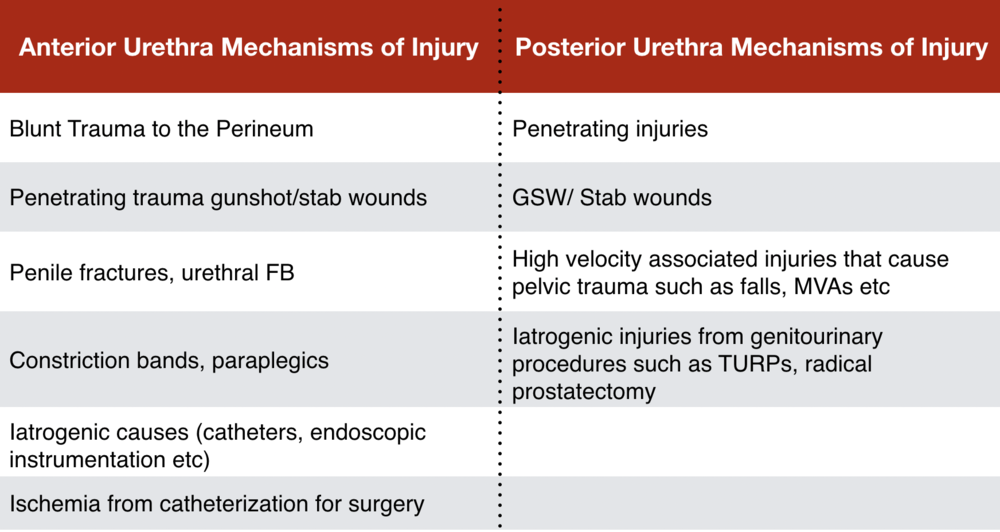 Table 1 - Common Mechanisms of Injury in Urethral Trauma. Chapple C, Barbagli G, Jordan G. Consensus statement on urethral trauma. BJU Int. 2004; 93(9):1195–20