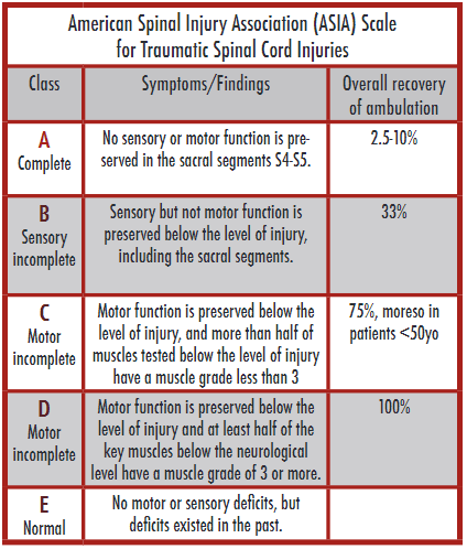 Table 1: american spinal injury association (asia) scale classifications system.