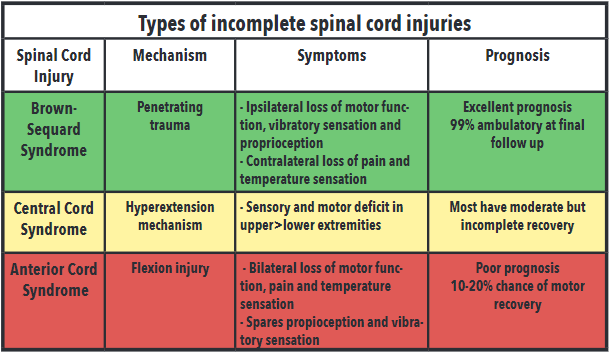 table 2: associated mechanism, symptoms, and prognosis of incomplete spinal cord injuries.