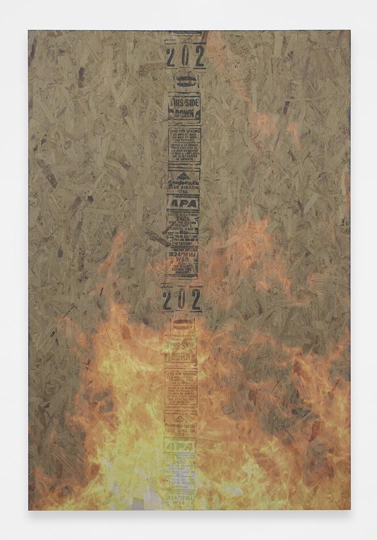 Bonfire 2<br>4' x 6'<br>2014