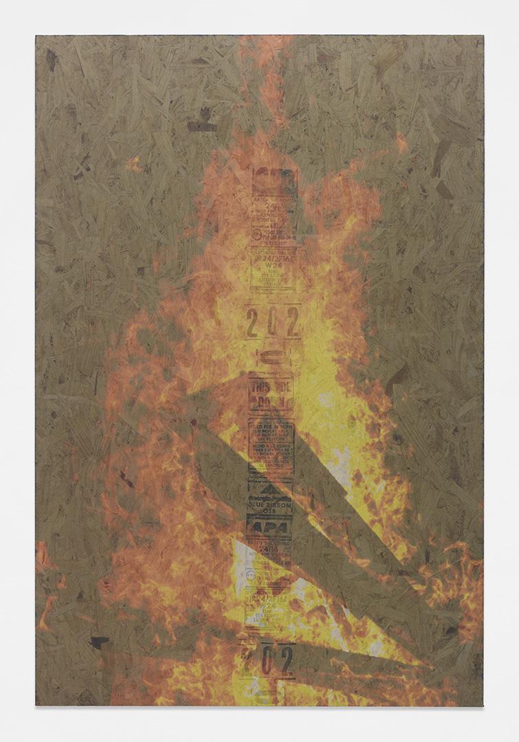 Bonfire 9<br>4' x 6'<br>2014