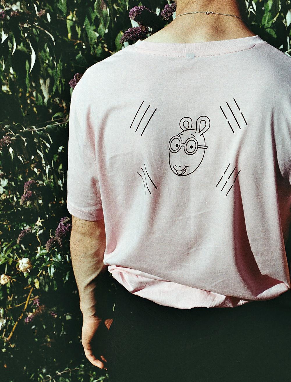 pink arthur (4).jpg