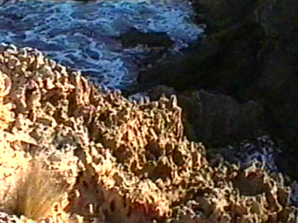 beach_0111_Layer 16.jpg