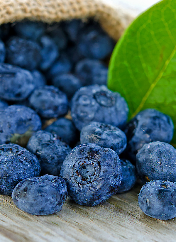 Fresh blueberries are delicious in this recipe but frozen berries can be used too.