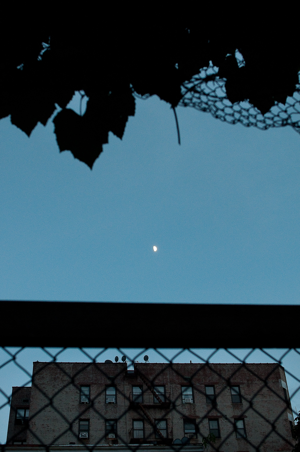 Framed Moon, Prospect Place  ,   Crown Heights, Brooklyn, NY