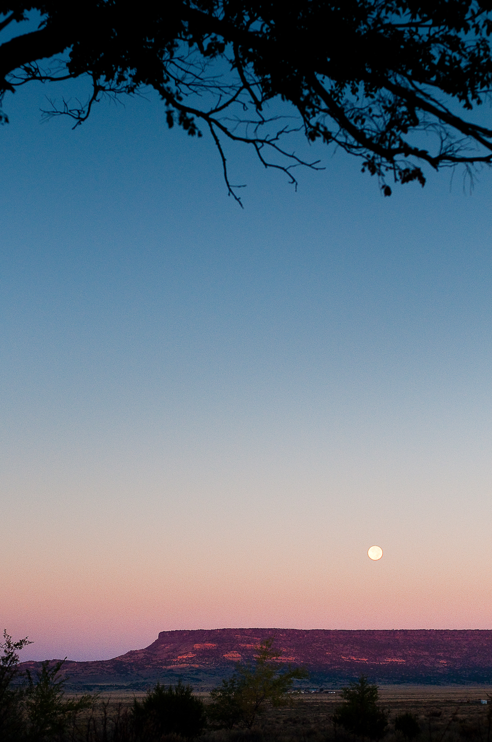 Moonset, Backyard  , San Fidel, NM