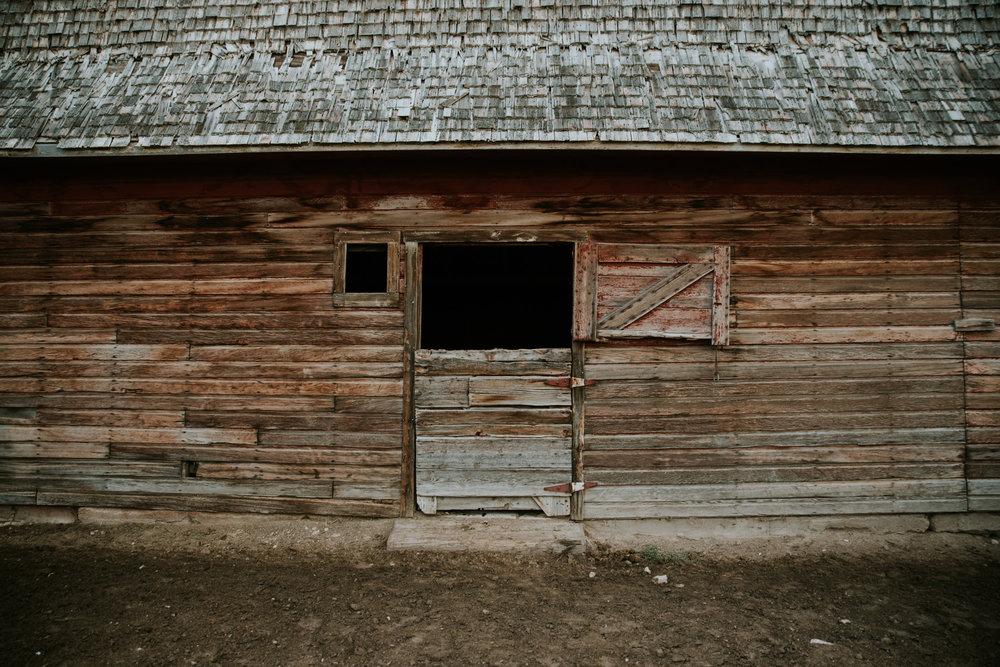 Carrie Ranch-8.jpg