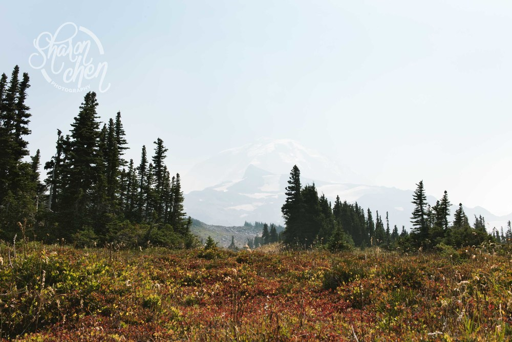 Mount Rainier slightly obscured by haze caused by forest fires.