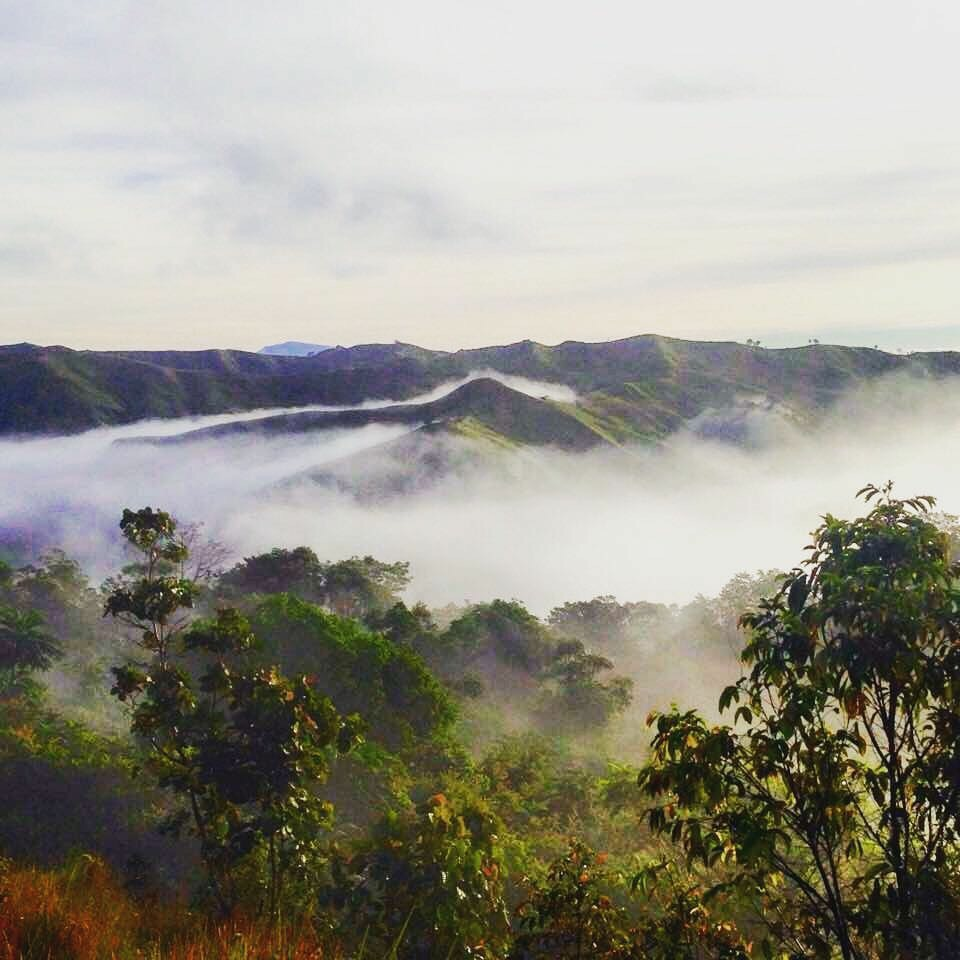 An impression of the Mapawa Nature Park