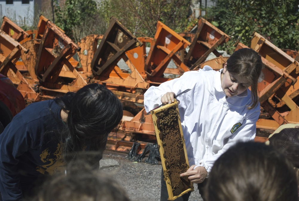 beekeeper kimberly rubin pulls frames out of a hive to show a group of girl scouts who joined us at the start of the talk.