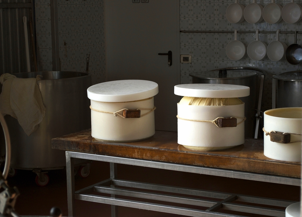 caseificio sociale bassa parmense (a parmesan cheese production facility) outsideparma, italy.