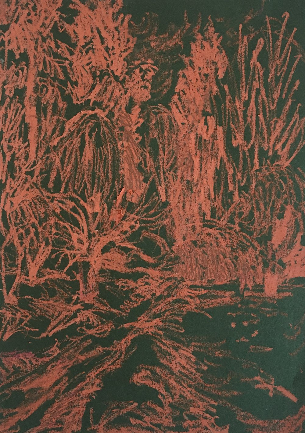 Night Vision , oil pastel on paper.