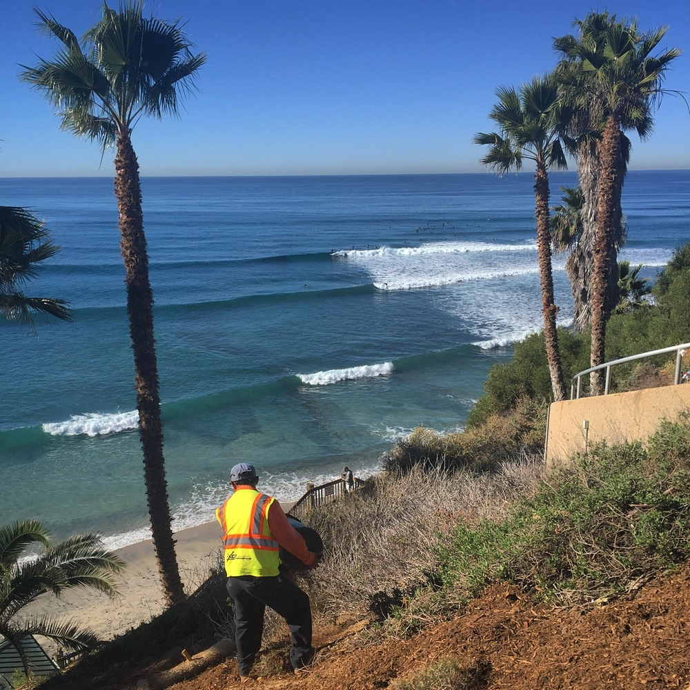 Workers prep for the impending Apocalypse - adding mulch to the cliffs at Swami's to reduce erosion. SoCal is in a state of panic as we prepare for the potential of the greatest El Niño in the history of history this winter.