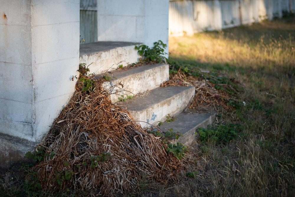 Cemetery Steps