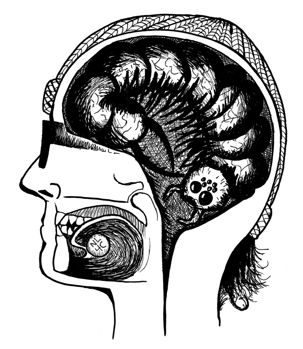 Brain bug.jpg