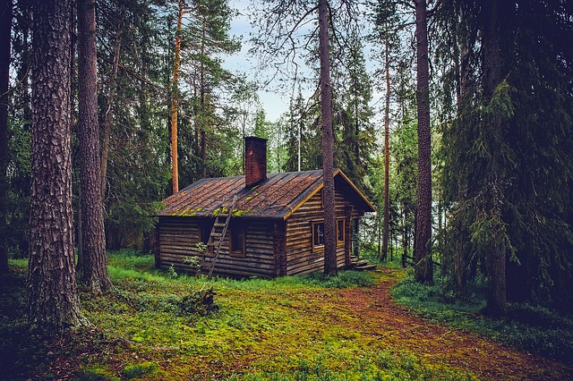 log-cabin-1886620_640.jpg