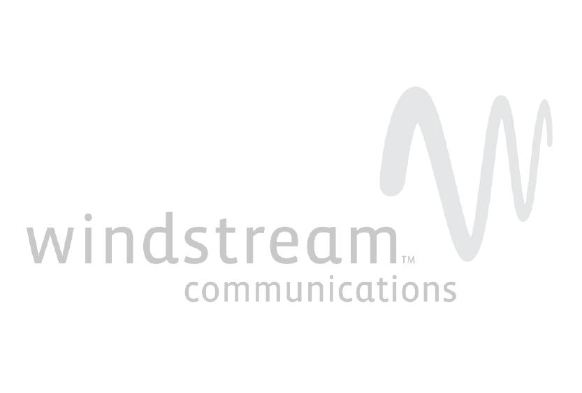 Windsteam Website Logo.png