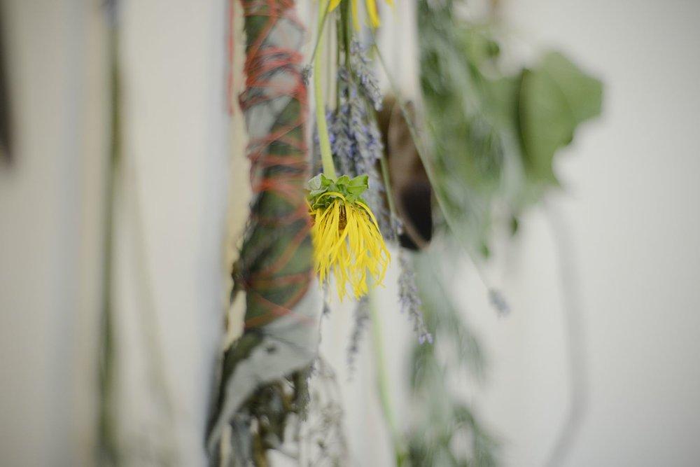 flora (53 of 54).jpg