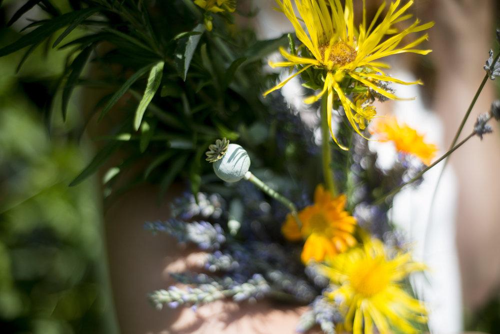 forageflowerbundle.jpg