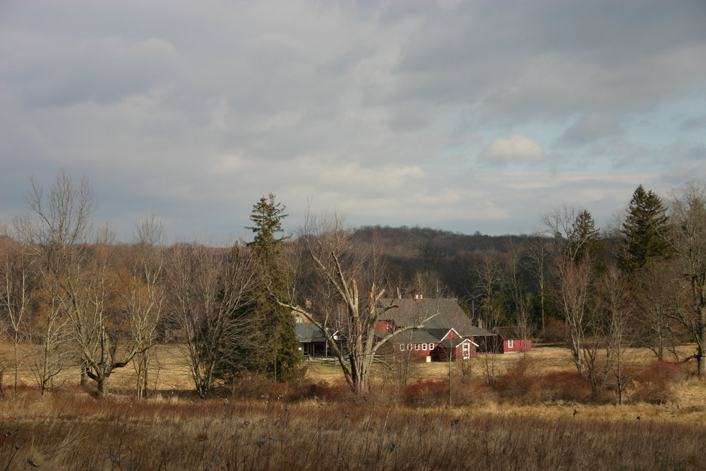 2008, a view of the barns from Pinecroft Preserve