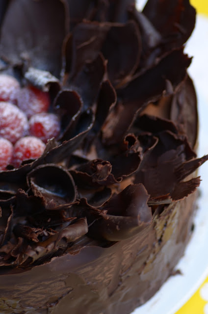 chocolate_raspberry_cake_2.jpg