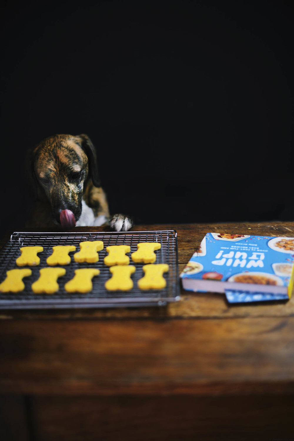 puppy treats: billy's pumpkin and flaxseed cookies | A Brown Table