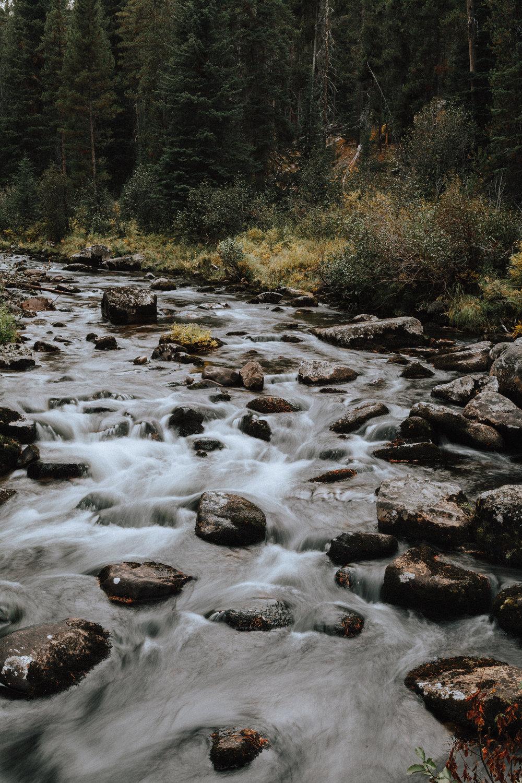 Montana River-1.jpg