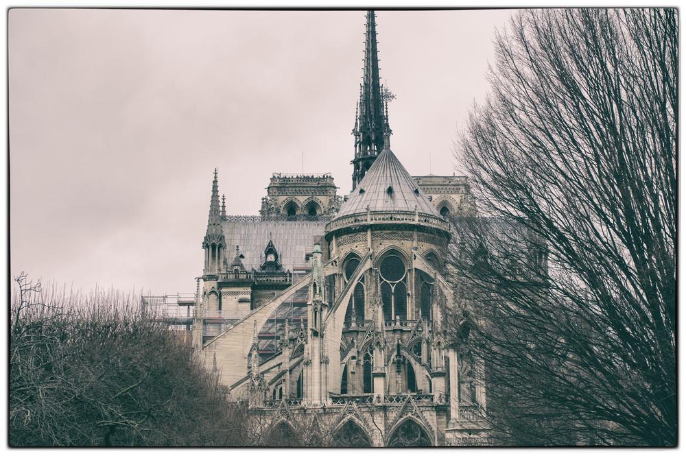 Notre Dame (rear view)