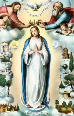 Mary crowned Queen of Heaven
