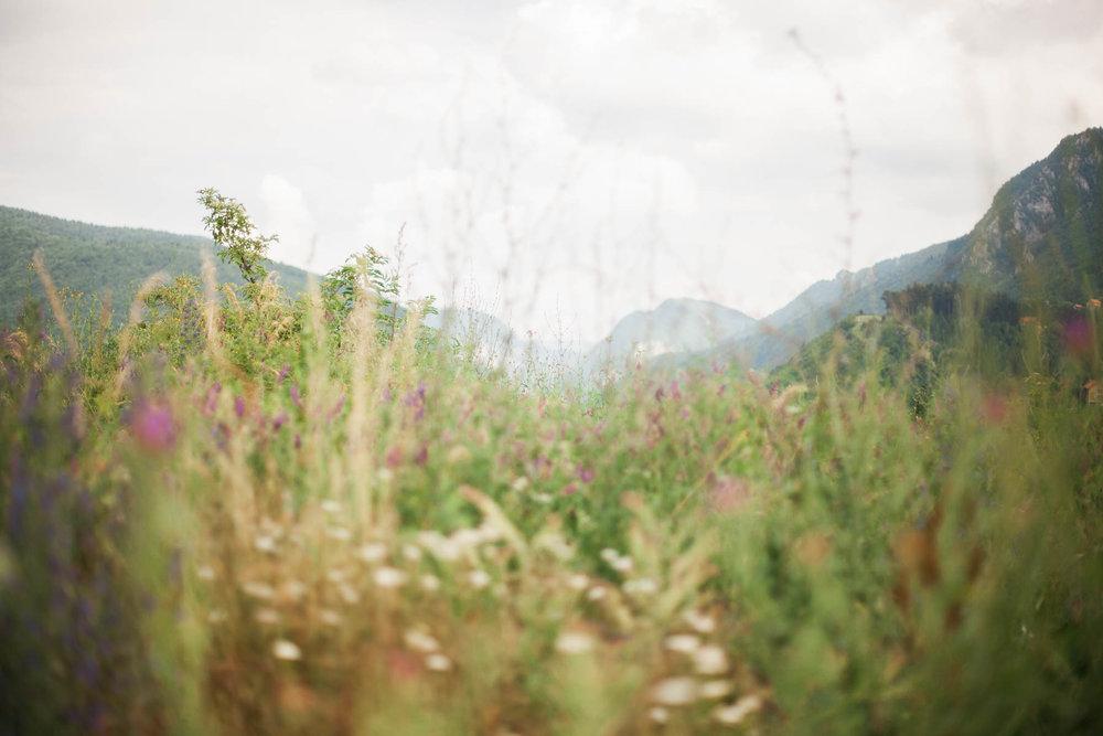 cassandra.dunning-153.jpg