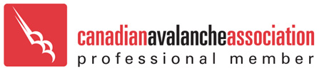 http://www.avalancheassociation.ca/