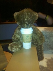 coffee bear.jpg